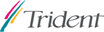 Trident Microsystems